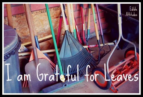 IamGratefulForLeaves