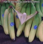 Ruthless Bananas