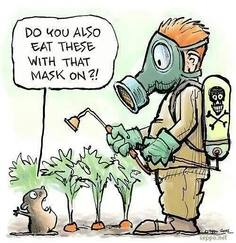 Eat With a Mask